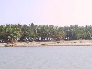 Chinnavaikal island, Cuddalore