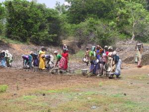 Manalamedu village, land reclaim 3