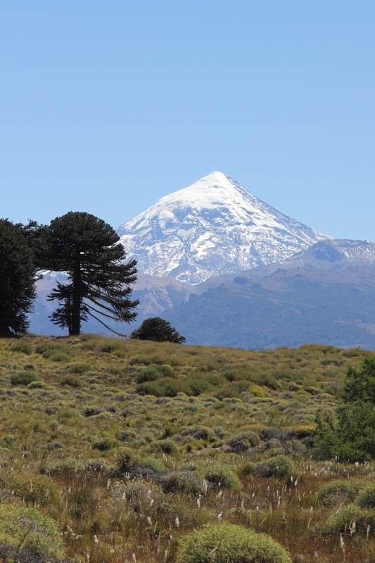 Lanin volcano from 50 kms away