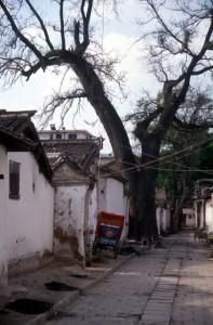 alley in Tianshui