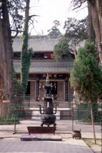 Fuxi temple, an oasis of peace