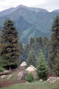 yurts in the Tianshan Mountains