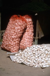 garlic in the Turpan market