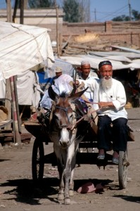 man and his donkey-drawn cart