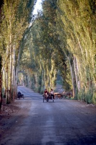 road in the outskirts of Turpan