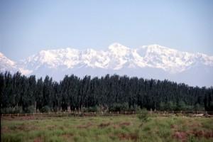 snow-capped mountains outside Aksu