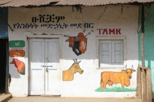 how do you advertise yourself in an analphabetic environment? the vet, in Jinka