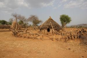Hamar hut in the village