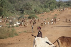 many South Omo Valley people are, or were, pastoralists