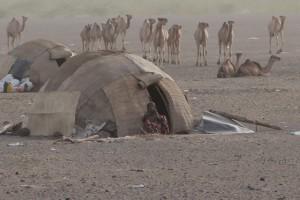 hamlet in the desert