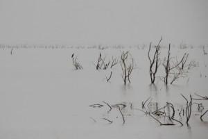 one of the lakes near Assaita