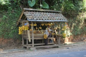 banana stall along the road