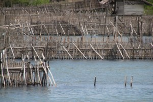 eel traps in the Poso River in Tentana