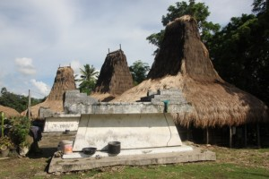 Kampung Tambelar, right behind our hotel in the center of town
