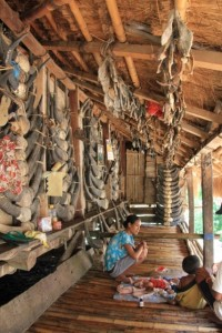 some of the houses are excessively decorated with buffalo horns and pig jaws, all from ceremonies