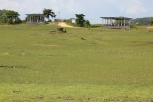 the pasola field in Hobakala