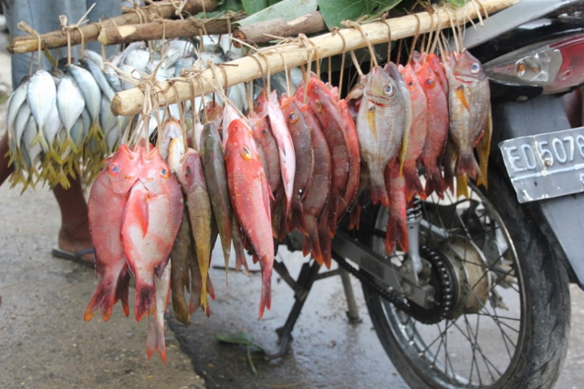 and this is how the market looks, on the back of a motorbike