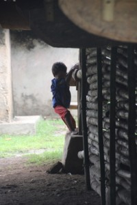 boy climbing down from his house in Wainyapu