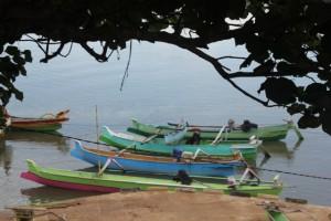 the fishing fleet of Pero