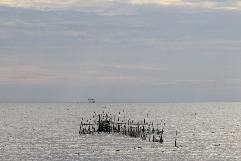 fishing nets along the coast outside Pare Pare