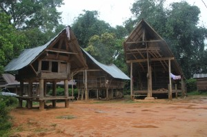 Loko village, with houses and rice barns