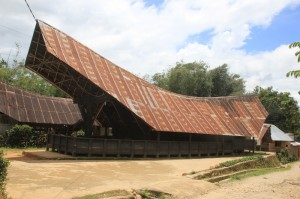 a saddle-shaped, overhanging roof is typical for the houses in the Mamasa region