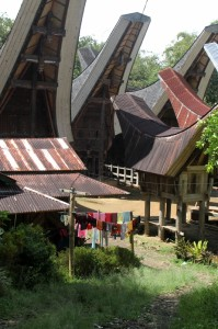 traditional houses – tongkonans - with rice barns in front