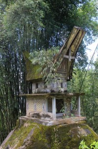 the tomb of a previous village eldest, perhaps, set aside in a bamboo grove