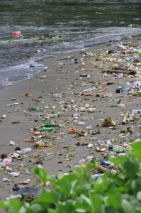 the beaches near the harbour are somewhat polluted, to say the least