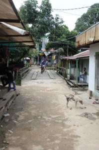 the main street, including bridge