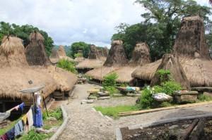 overview of Kampung Waitabara