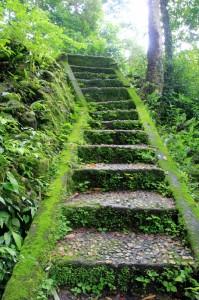 stairs leading to Kampung Prairami