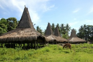 the village of Rangabaki