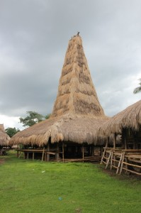 one of the tall roofs in Paranobaroro