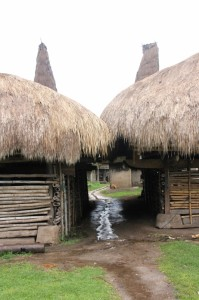 the narrow entrance to a clan kampung, in between two houses
