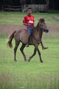 young boy riding across the pasola field