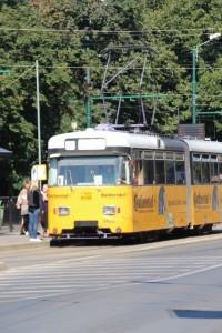 Timisoara tram