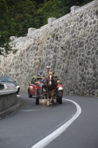 narrow, winding roads in the Bicaz, no overtaking, yet traffic in the gorge is a free-for-all