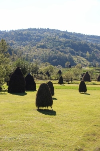 hay stacks, perhaps one of the most characteristic views in Maramures