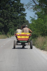 lost of transport in the countryside is still by horse-drawn cart