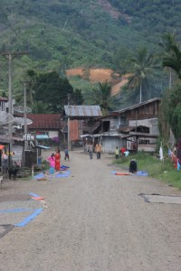 Highlands village with coffee drying along the road