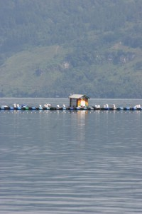 colourful fishing jetty in Lake Toba
