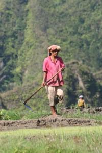 farmer outside Jangga
