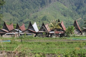 other villages, near jangga, are also full of traditional houses