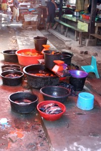 buckets of fish in the market