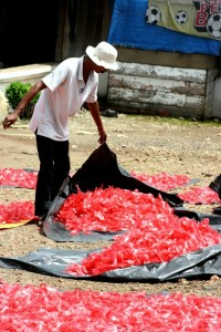 man drying krupuk