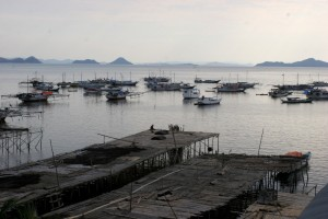 late afternoon view of the fishing fleet