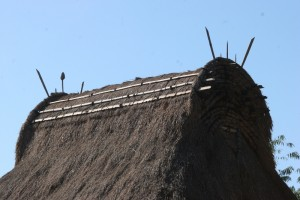 thatched roof, strengthened at the top (Lobu)