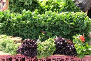 herbs, including pink basil, in the bazaar