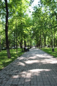 the leafy central part of Erkindik Boulevard